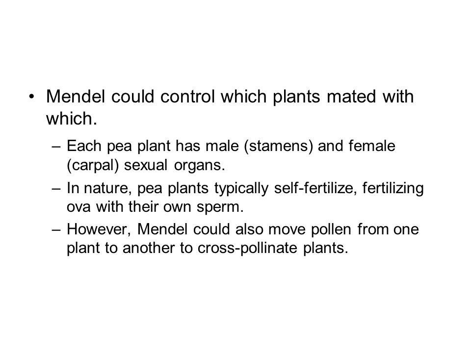 Mendel could control which plants mated with which.