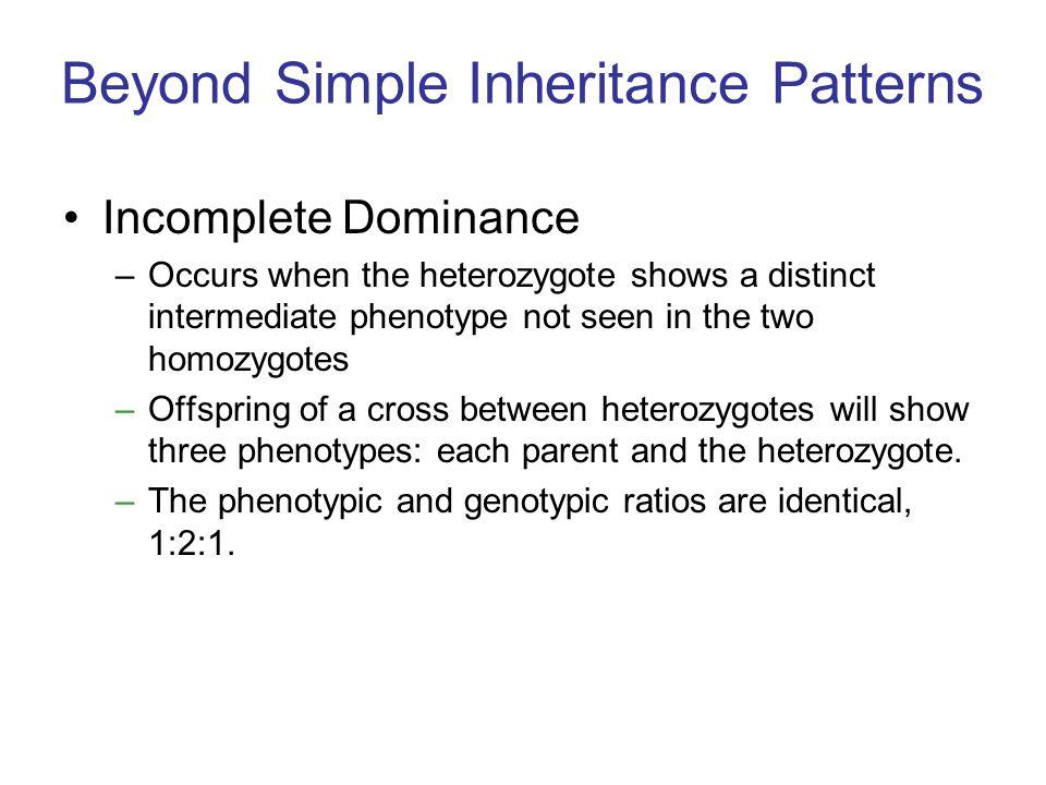 Beyond Simple Inheritance Patterns