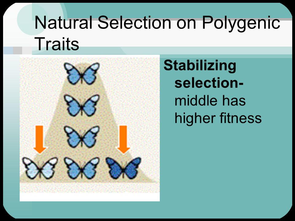 Natural Selection on Polygenic Traits