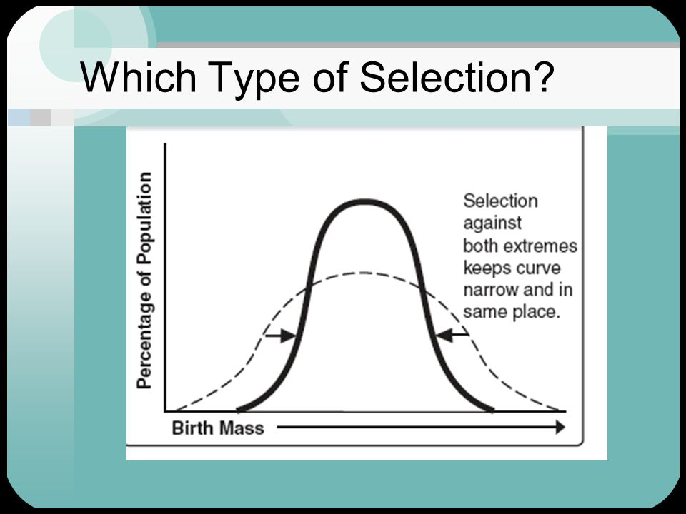 Which Type of Selection