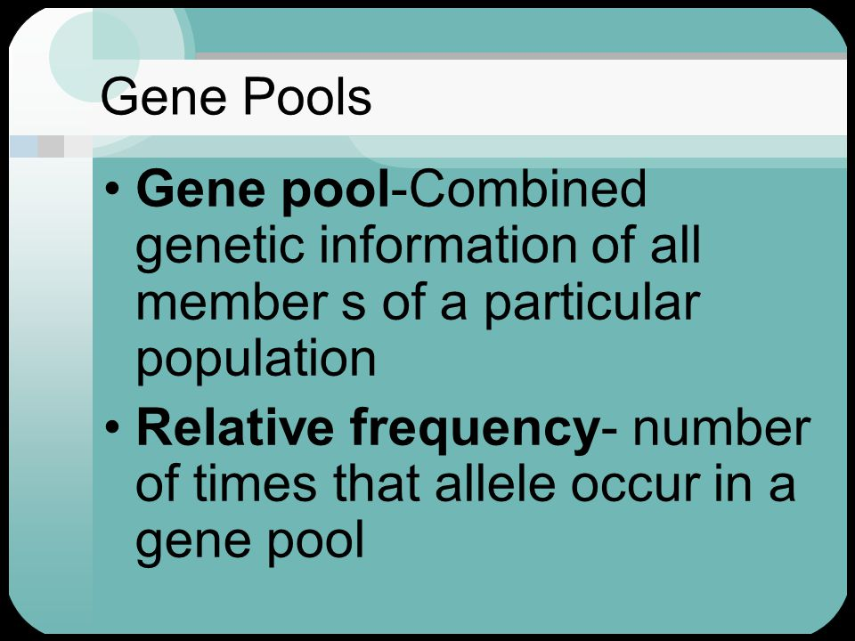 Gene Pools Gene pool-Combined genetic information of all member s of a particular population.