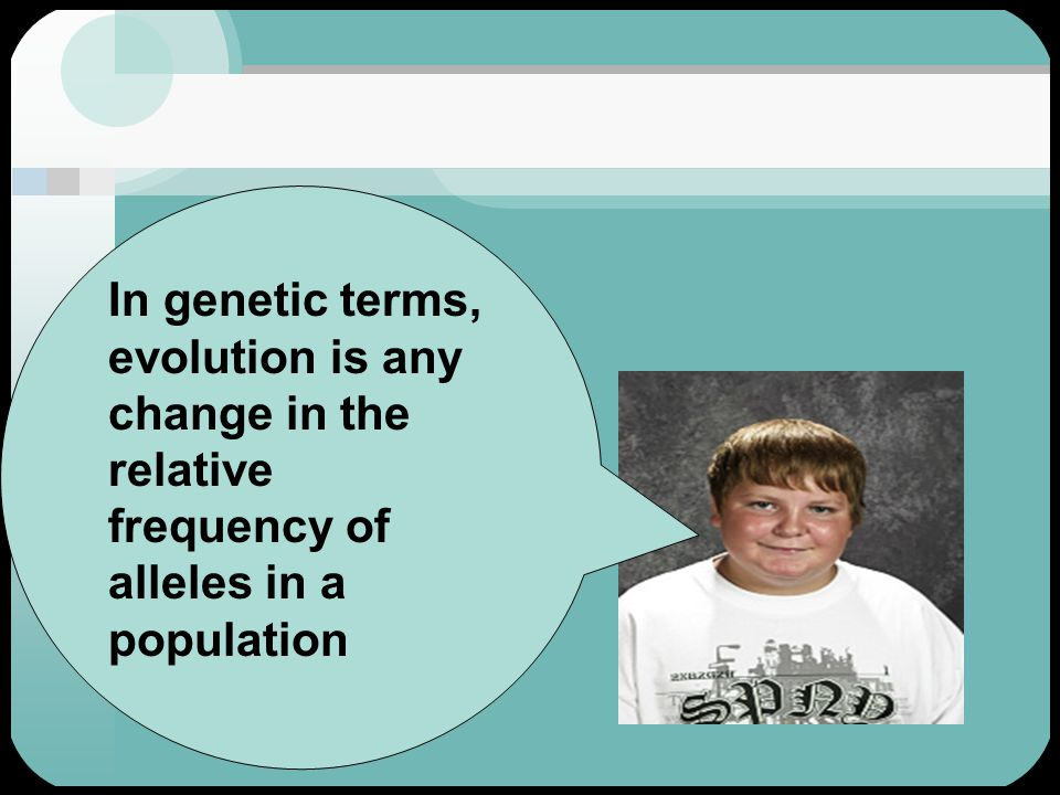 In genetic terms, evolution is any change in the relative frequency of alleles in a population
