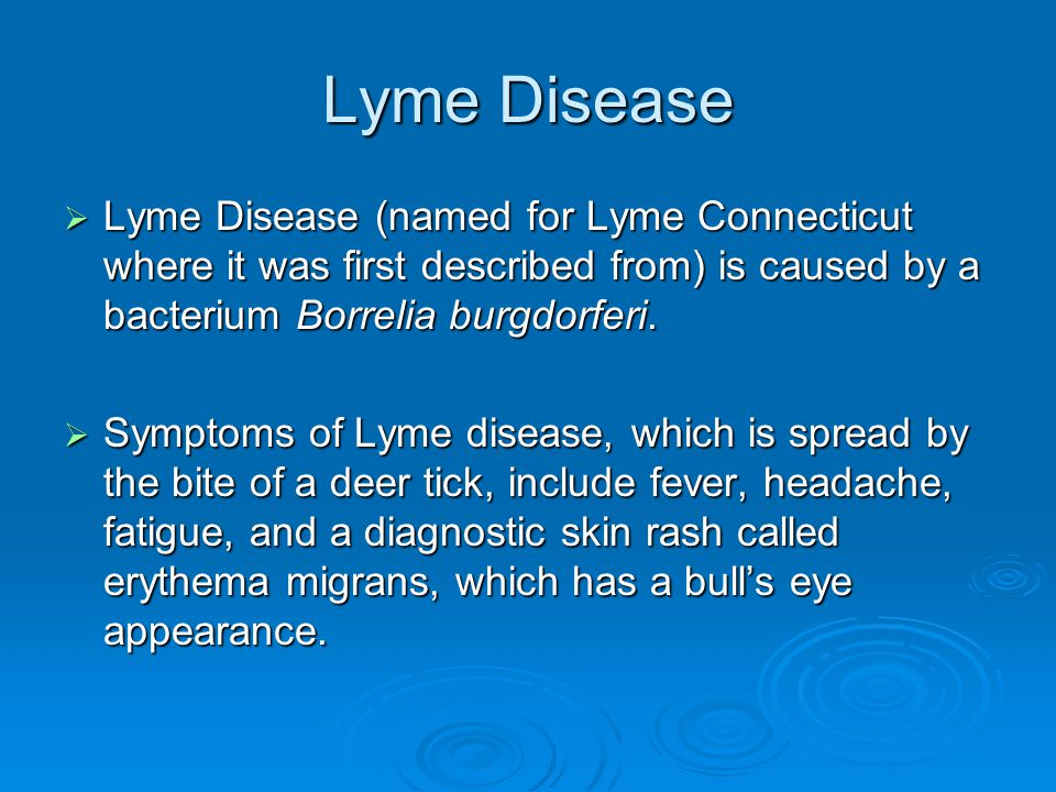 Lyme Disease Lyme Disease (named for Lyme Connecticut where it was first described from) is caused by a bacterium Borrelia burgdorferi.