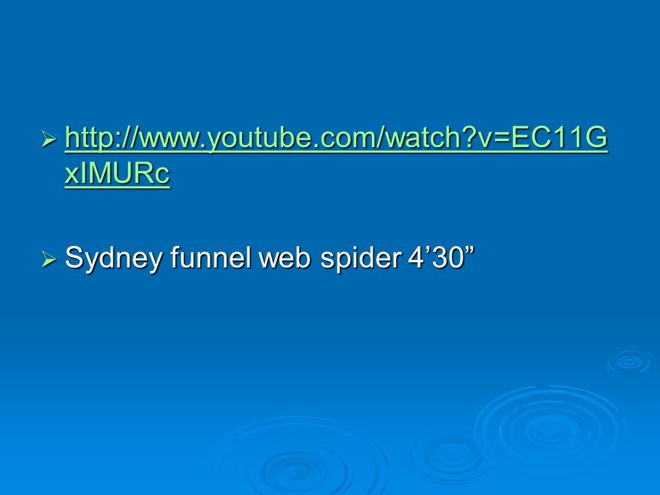 http://www.youtube.com/watch v=EC11GxIMURc Sydney funnel web spider 4'30