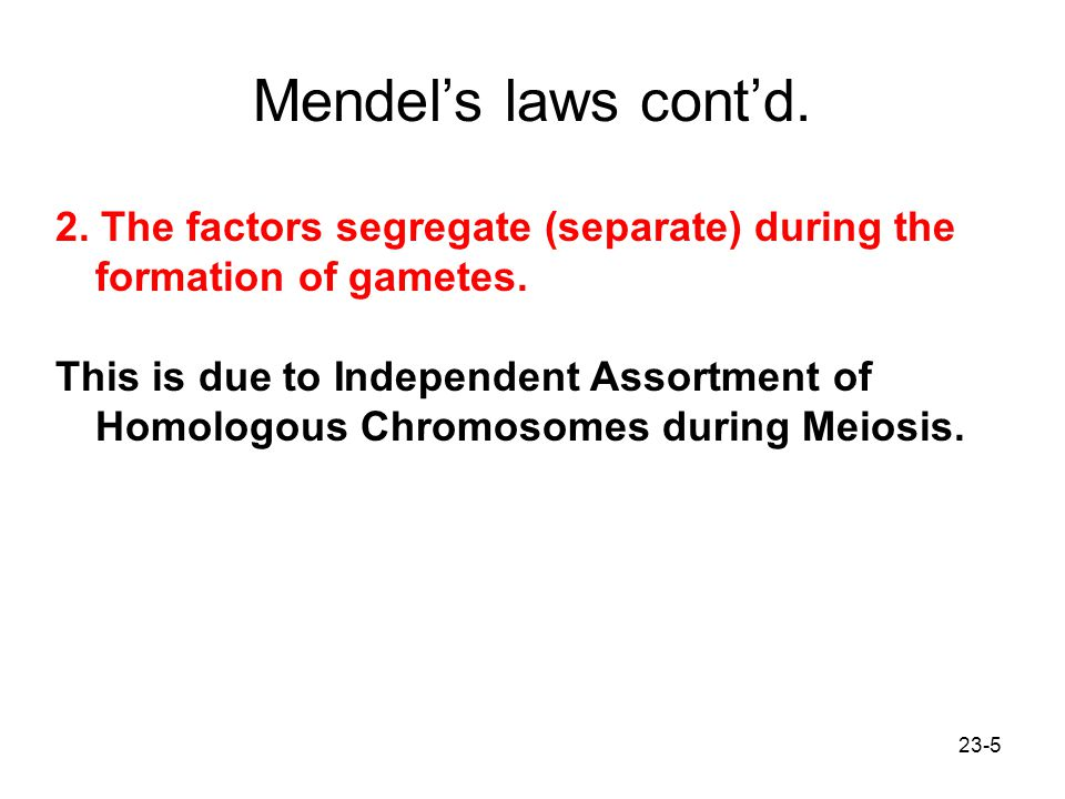 Mendel's laws cont'd. 2. The factors segregate (separate) during the formation of gametes.