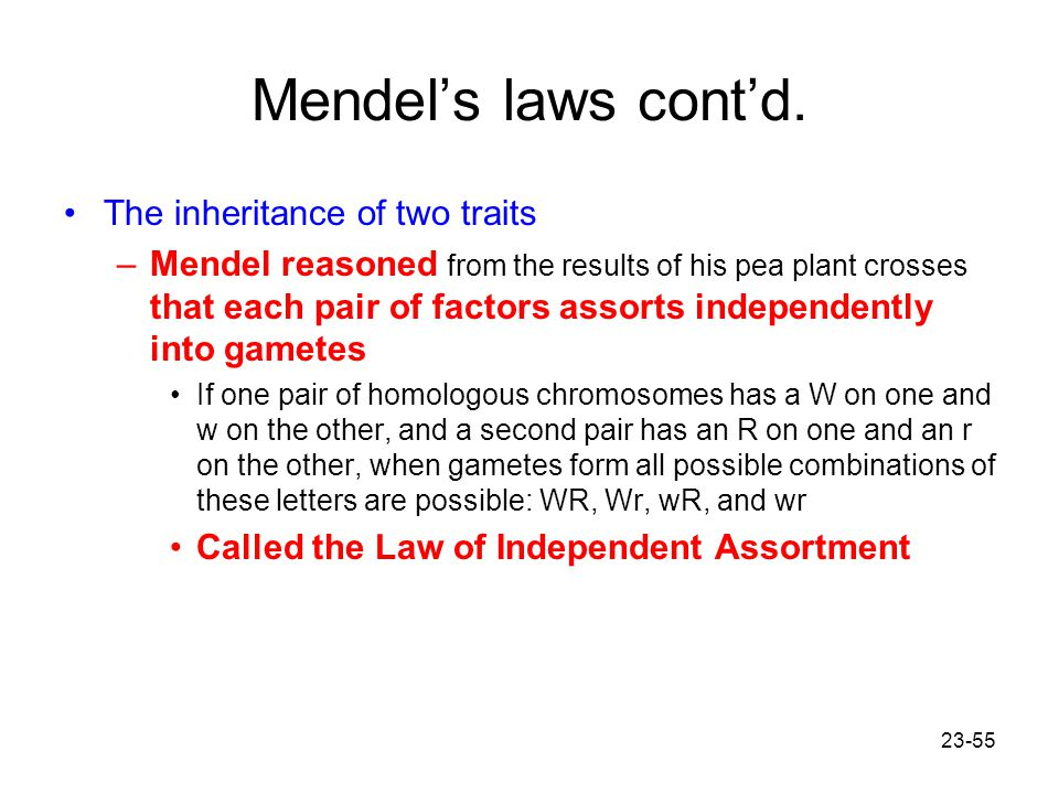 Mendel's laws cont'd. The inheritance of two traits