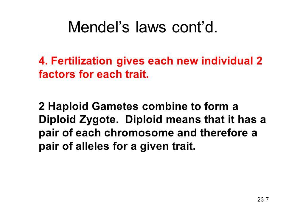 Mendel's laws cont'd. 4. Fertilization gives each new individual 2 factors for each trait.
