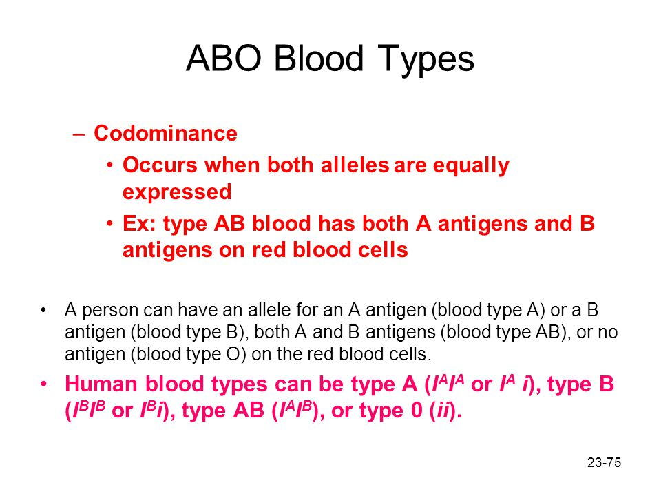 ABO Blood Types Codominance