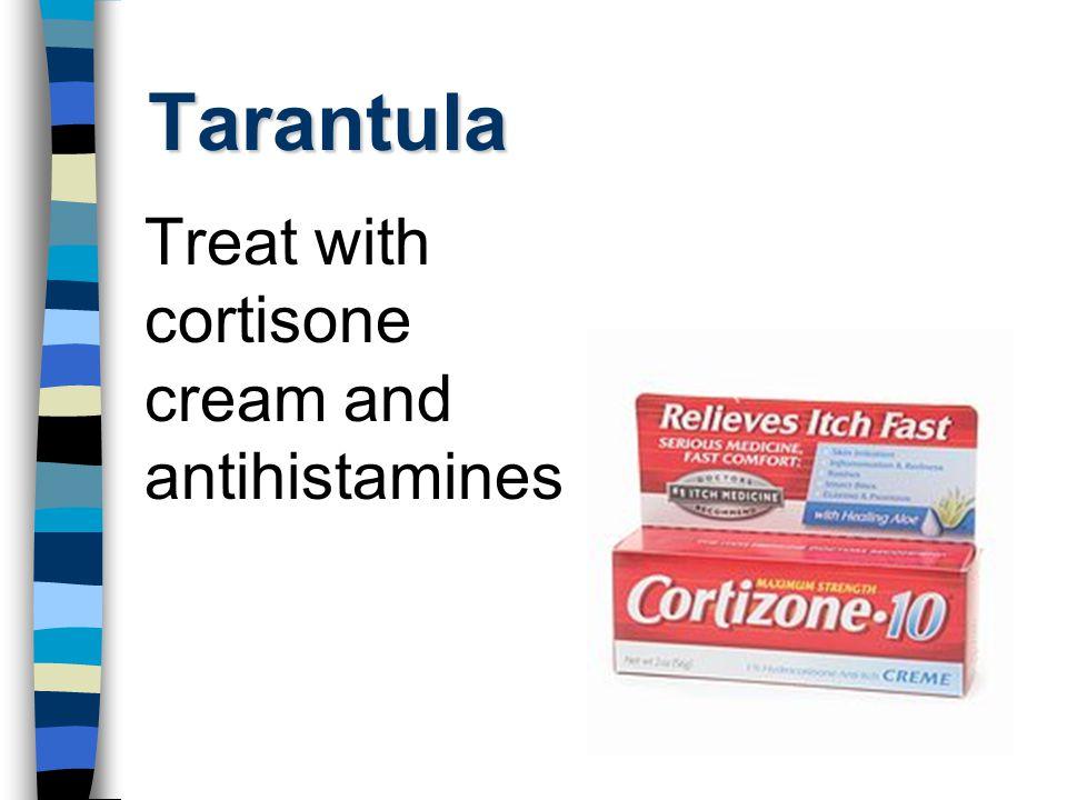 Tarantula Treat with cortisone cream and antihistamines