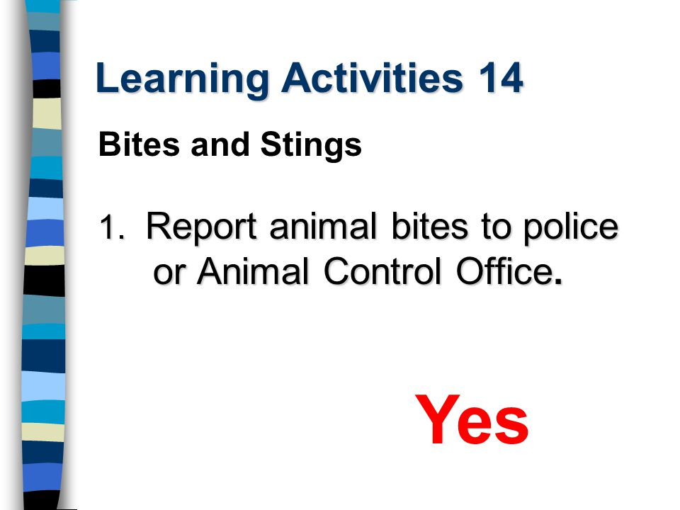 Yes Learning Activities 14 Bites and Stings