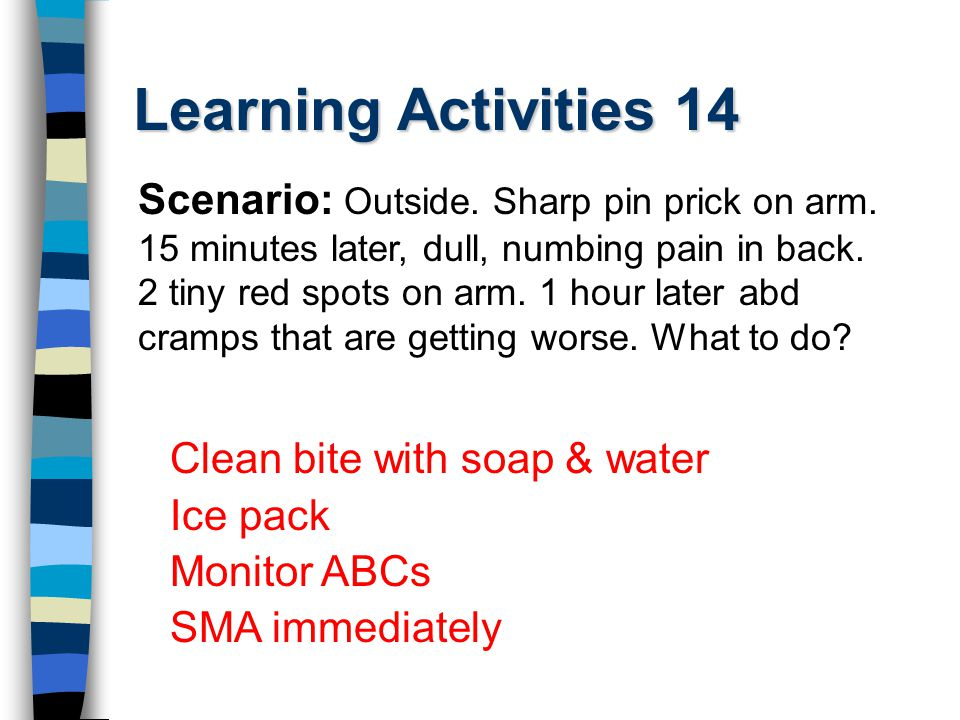 Learning Activities 14