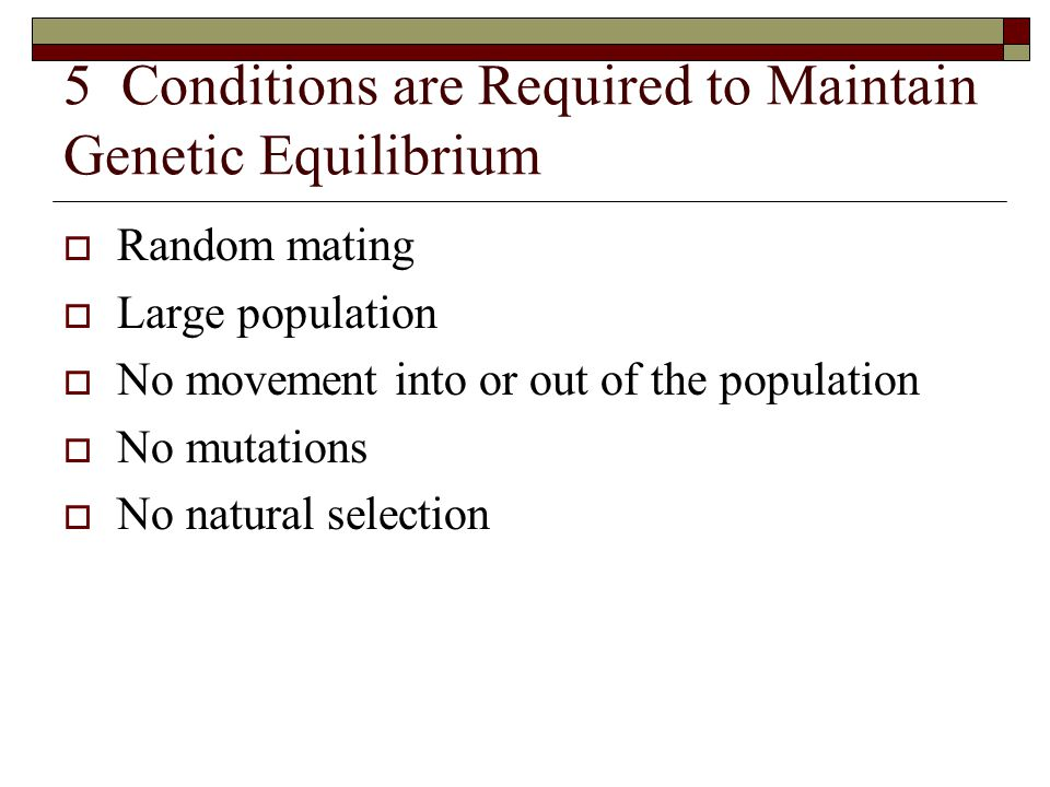 5 Conditions are Required to Maintain Genetic Equilibrium