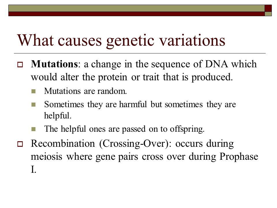 What causes genetic variations