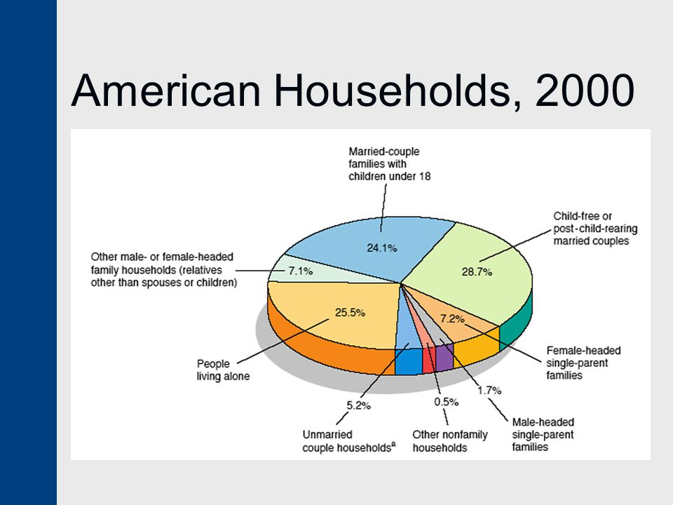 American Households, 2000