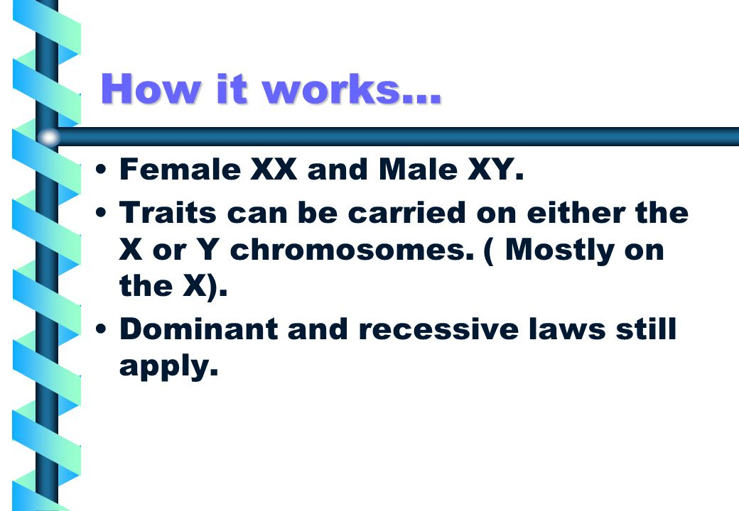 How it works… Female XX and Male XY.