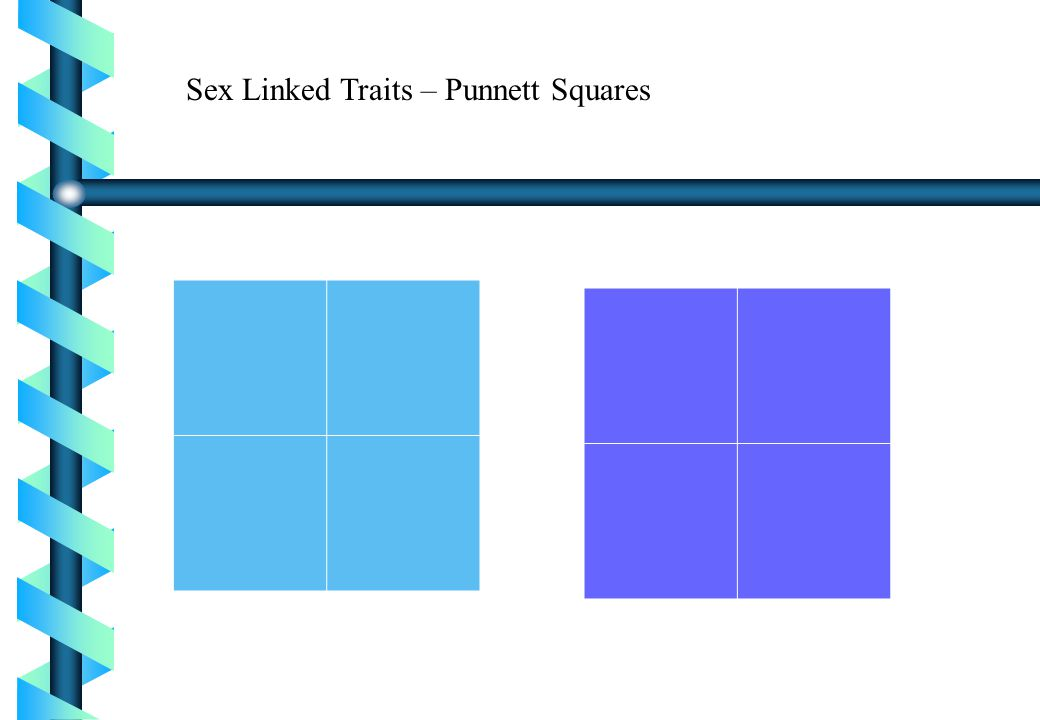 Sex Linked Traits – Punnett Squares