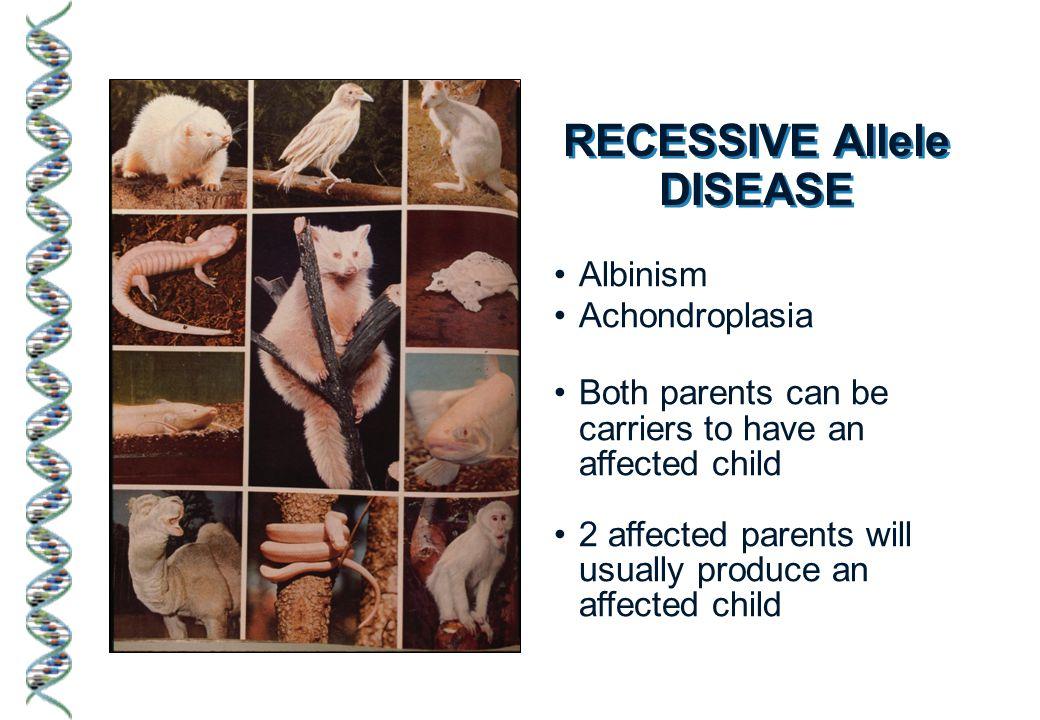 RECESSIVE Allele DISEASE