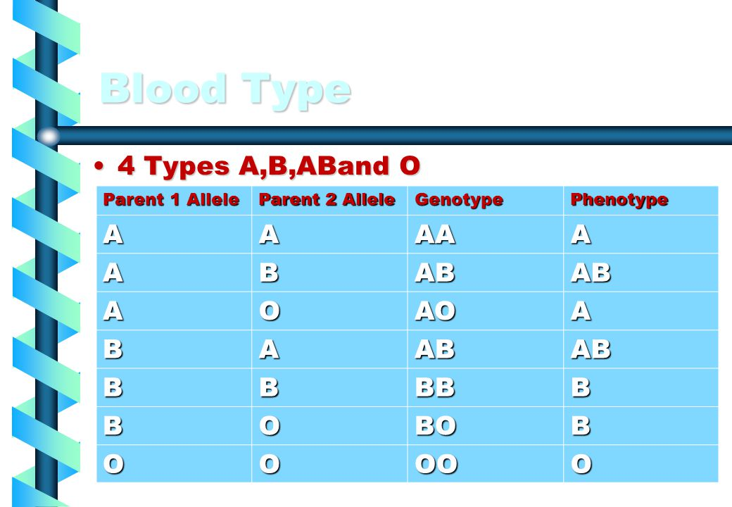 Blood Type 4 Types A,B,ABand O A AA B AB O AO BB BO OO Parent 1 Allele