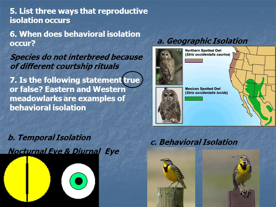 5. List three ways that reproductive isolation occurs