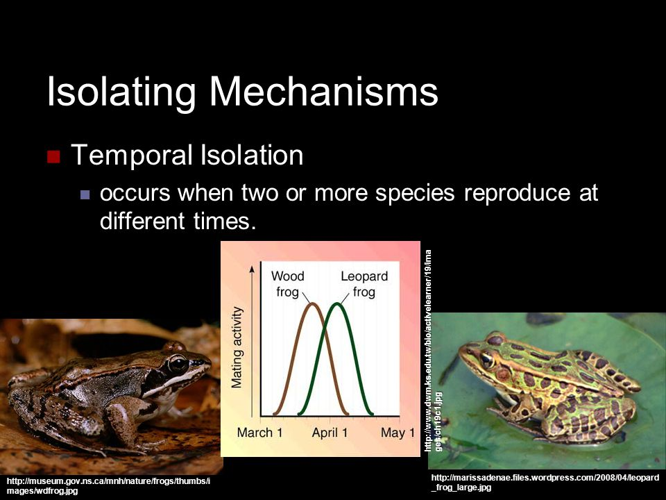 Isolating Mechanisms Temporal Isolation