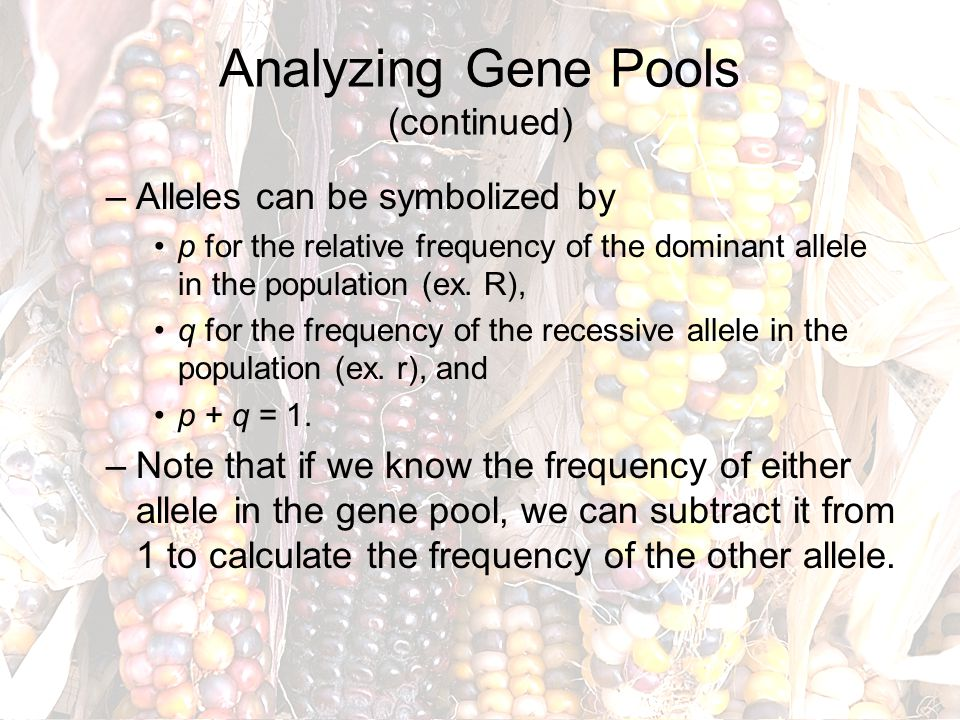 Analyzing Gene Pools (continued)