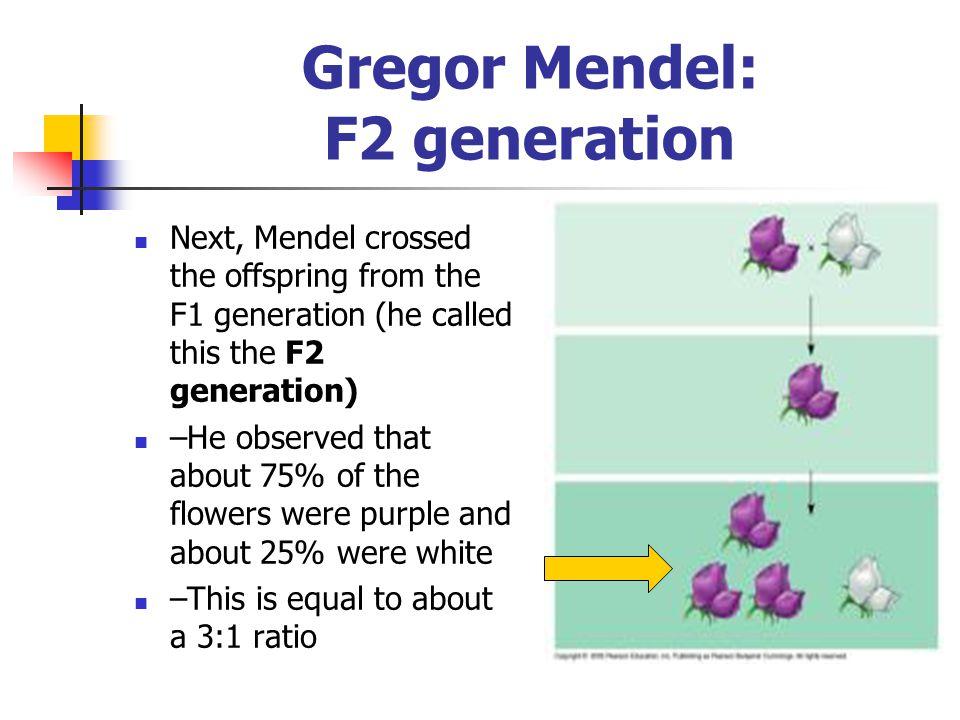 Gregor Mendel: F2 generation