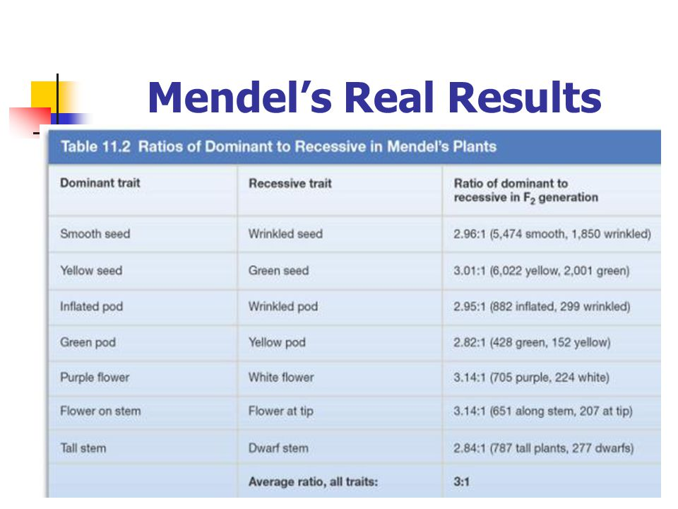 Mendel's Real Results