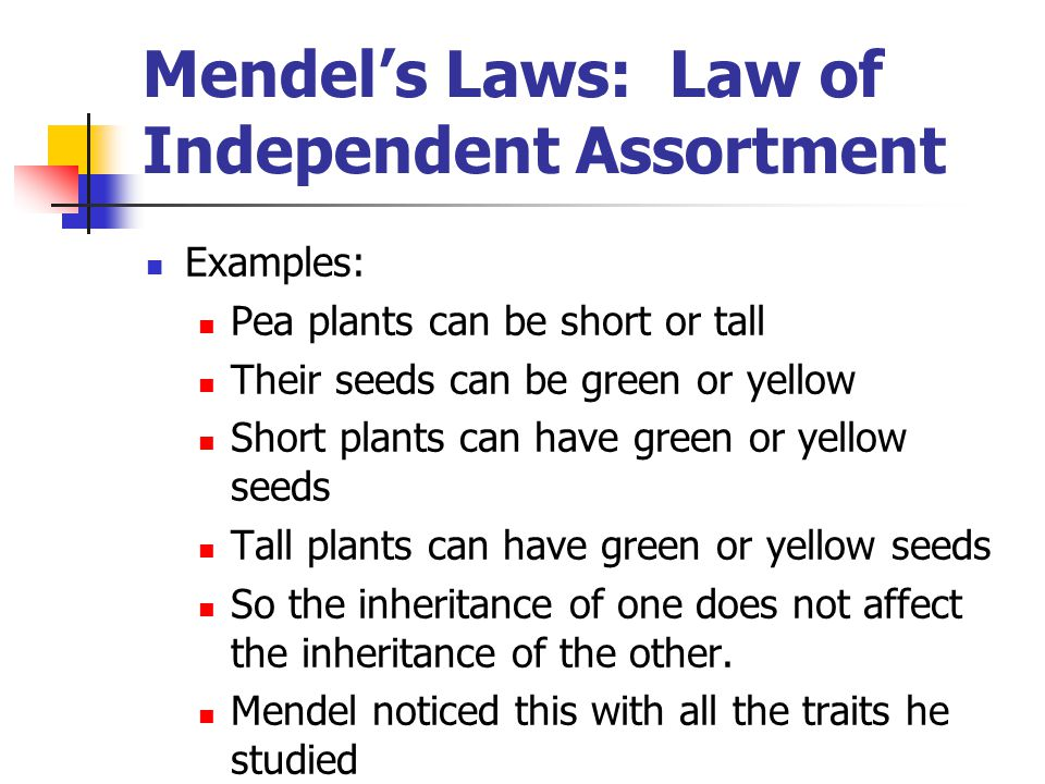 Mendel's Laws: Law of Independent Assortment