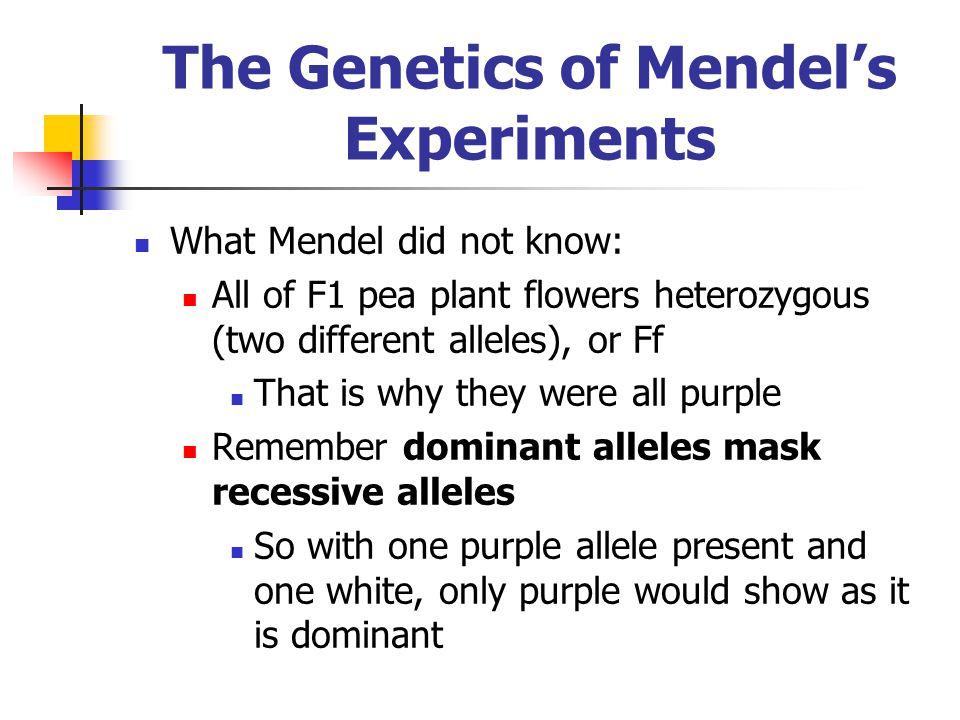 The Genetics of Mendel's Experiments