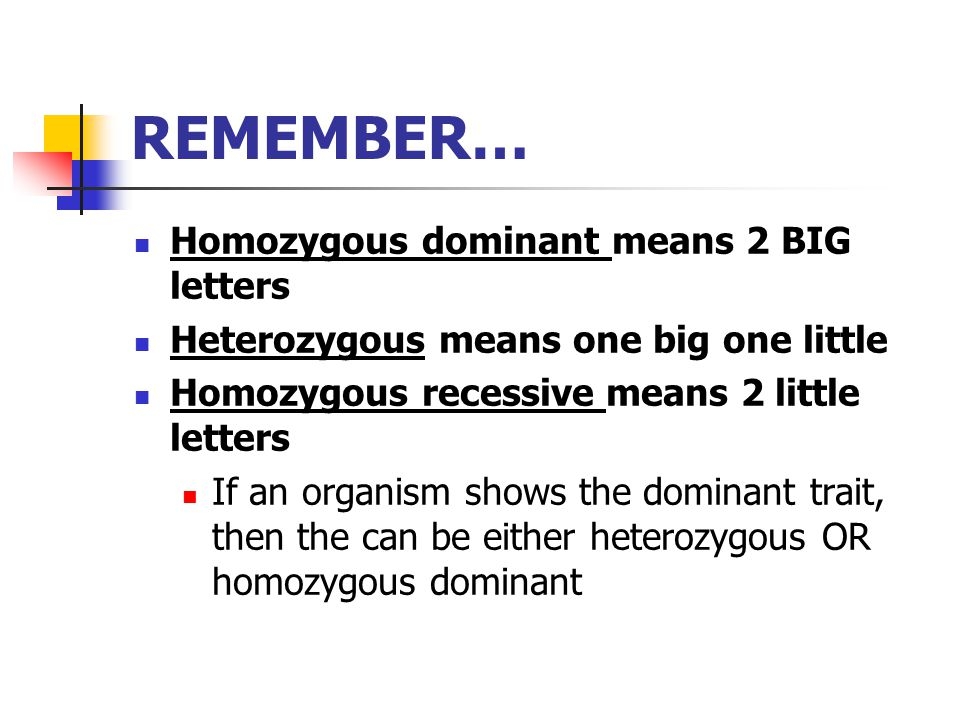 REMEMBER… Homozygous dominant means 2 BIG letters