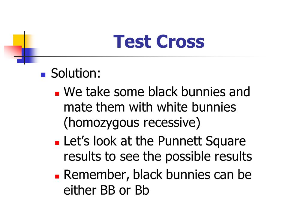 Test Cross Solution: We take some black bunnies and mate them with white bunnies (homozygous recessive)
