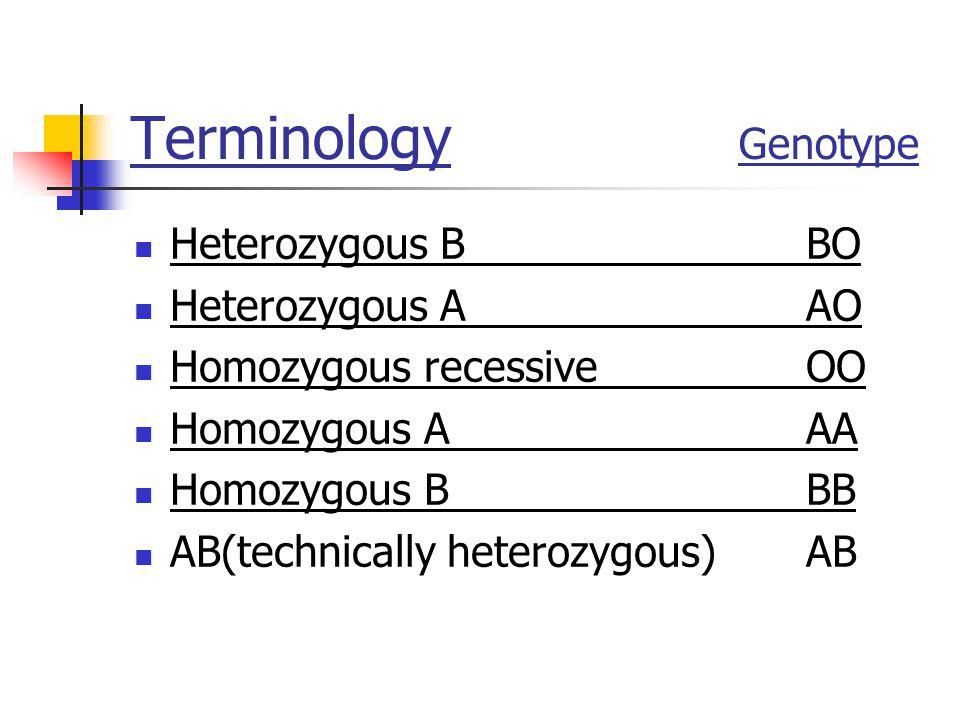Terminology Genotype Heterozygous B BO Heterozygous A AO