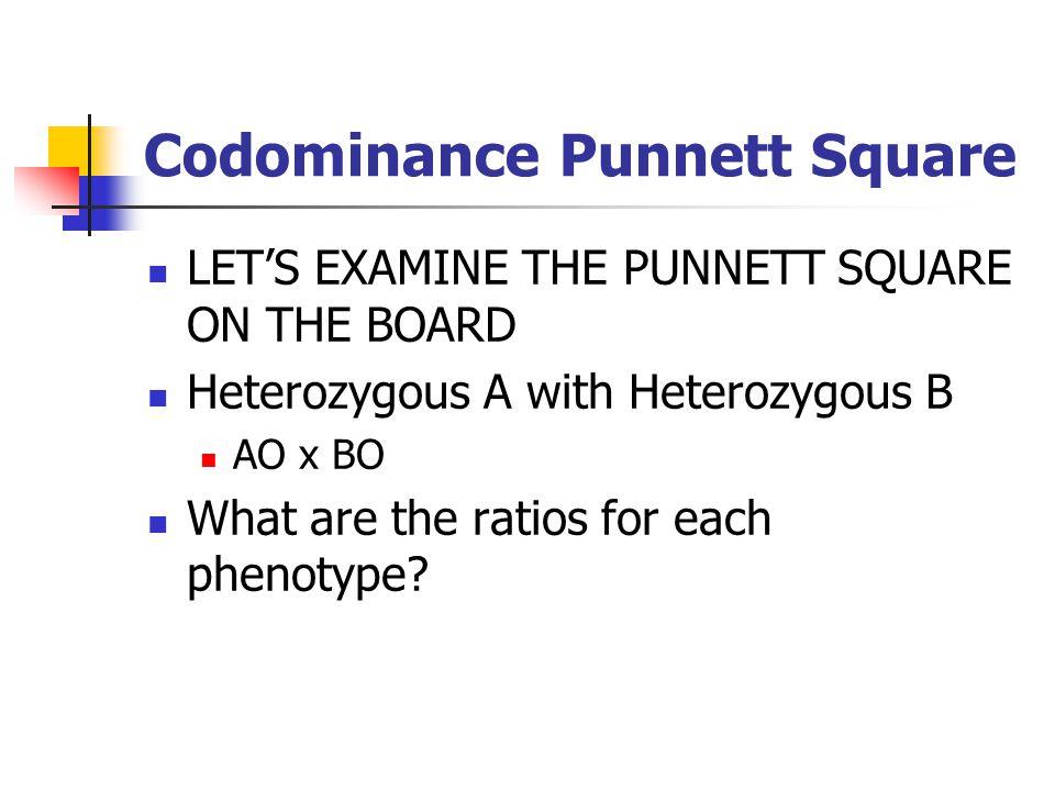 Codominance Punnett Square