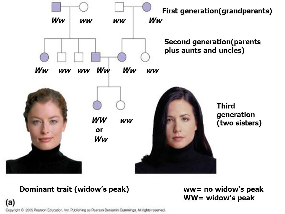 First generation(grandparents)