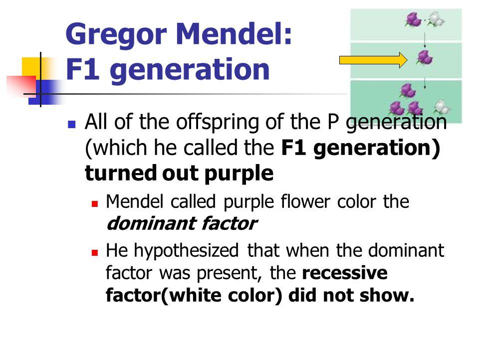Gregor Mendel: F1 generation
