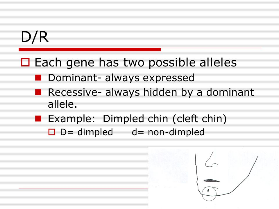 D/R Each gene has two possible alleles Dominant- always expressed
