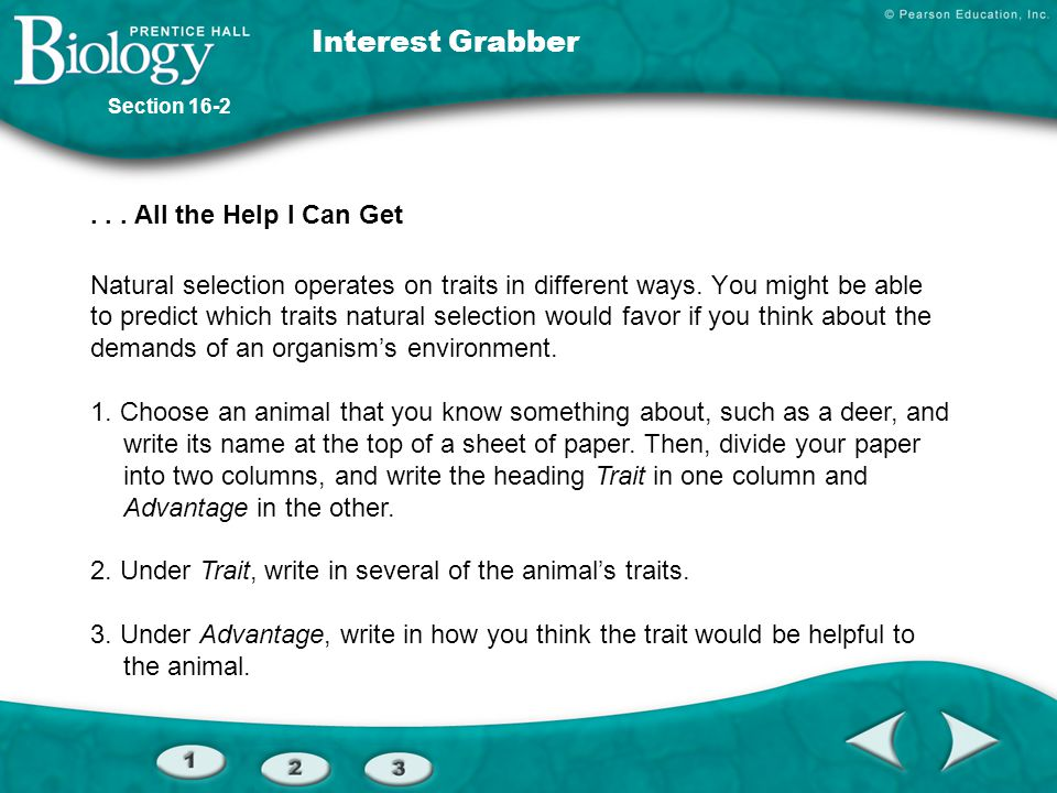 Interest Grabber . . . All the Help I Can Get