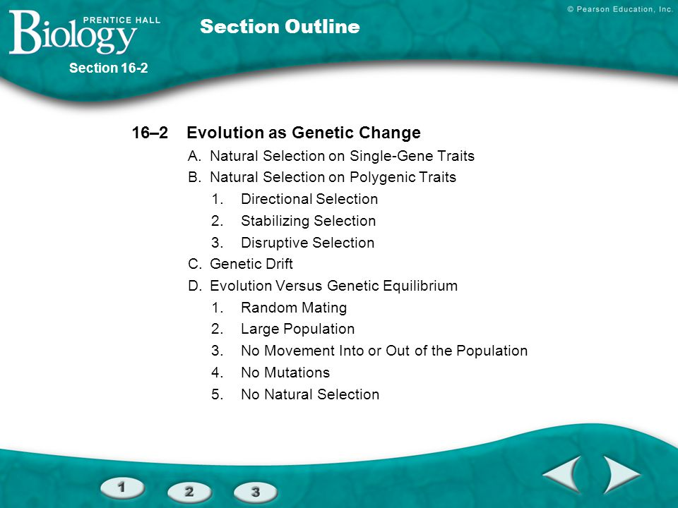 Section Outline 16–2 Evolution as Genetic Change
