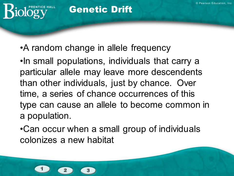 Genetic Drift A random change in allele frequency.