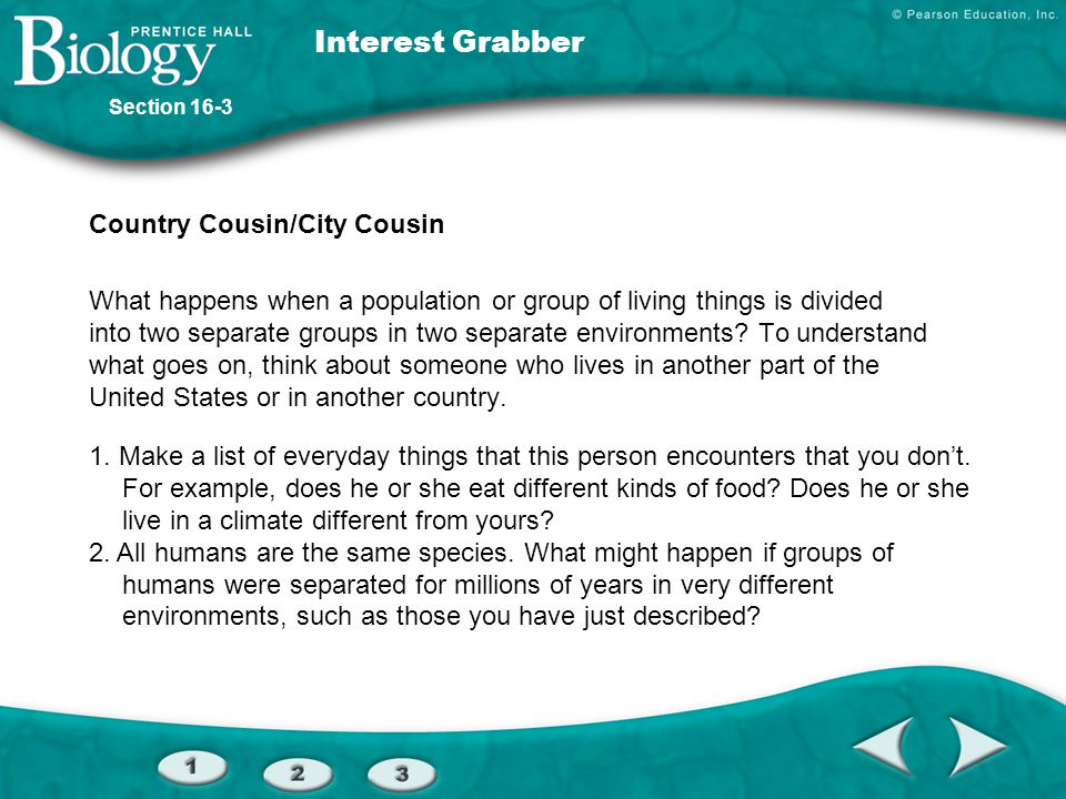 Interest Grabber Country Cousin/City Cousin
