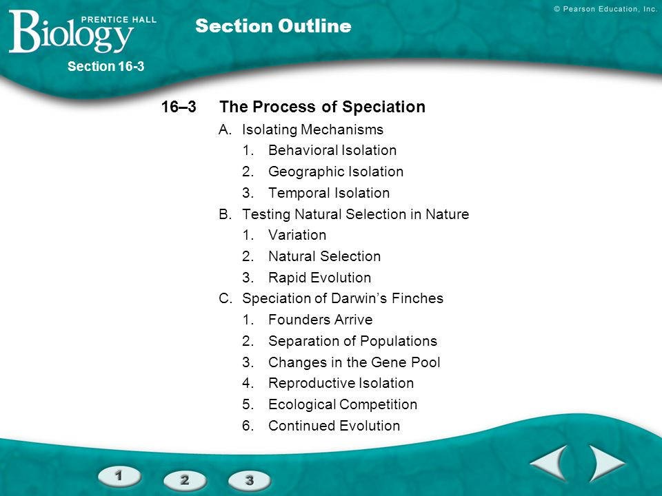 Section Outline 16–3 The Process of Speciation A. Isolating Mechanisms