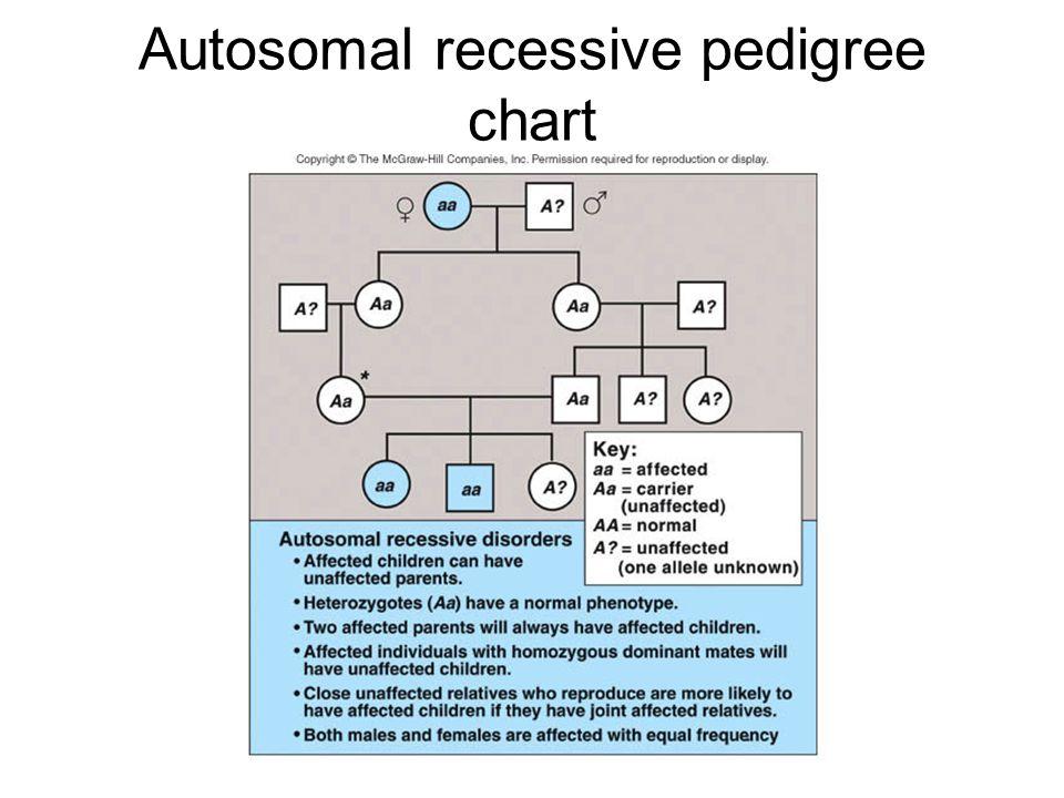 Autosomal recessive pedigree chart