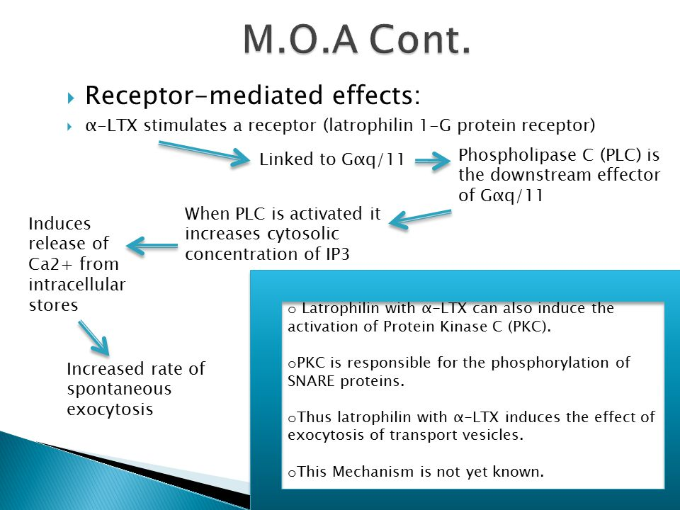 M.O.A Cont. Receptor-mediated effects: