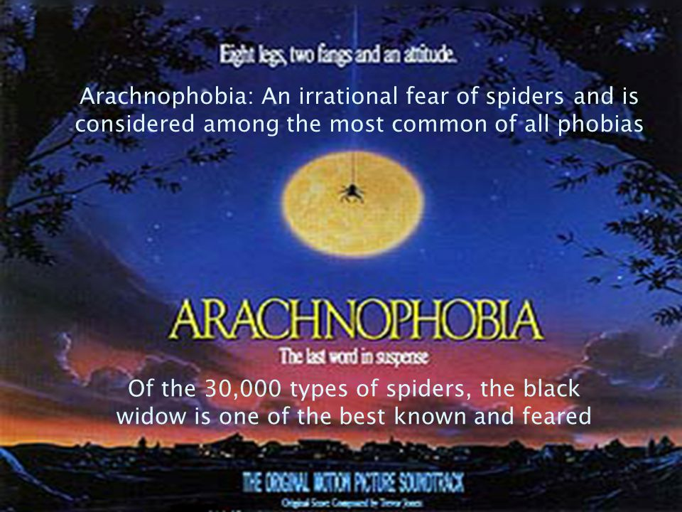 Arachnophobia: An irrational fear of spiders and is considered among the most common of all phobias