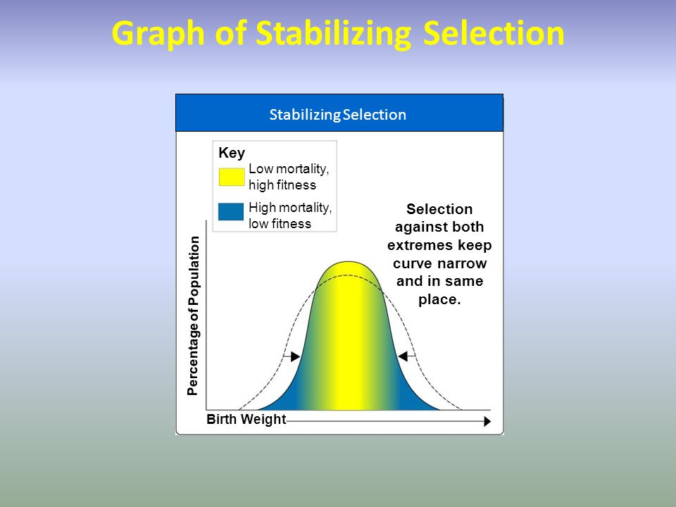 Graph of Stabilizing Selection