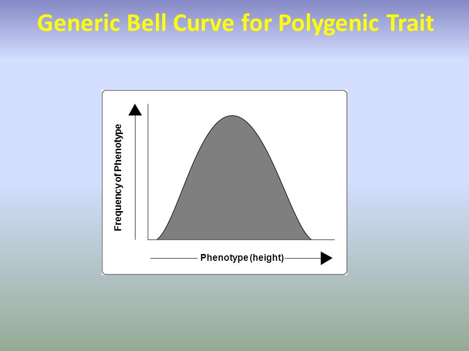 Generic Bell Curve for Polygenic Trait