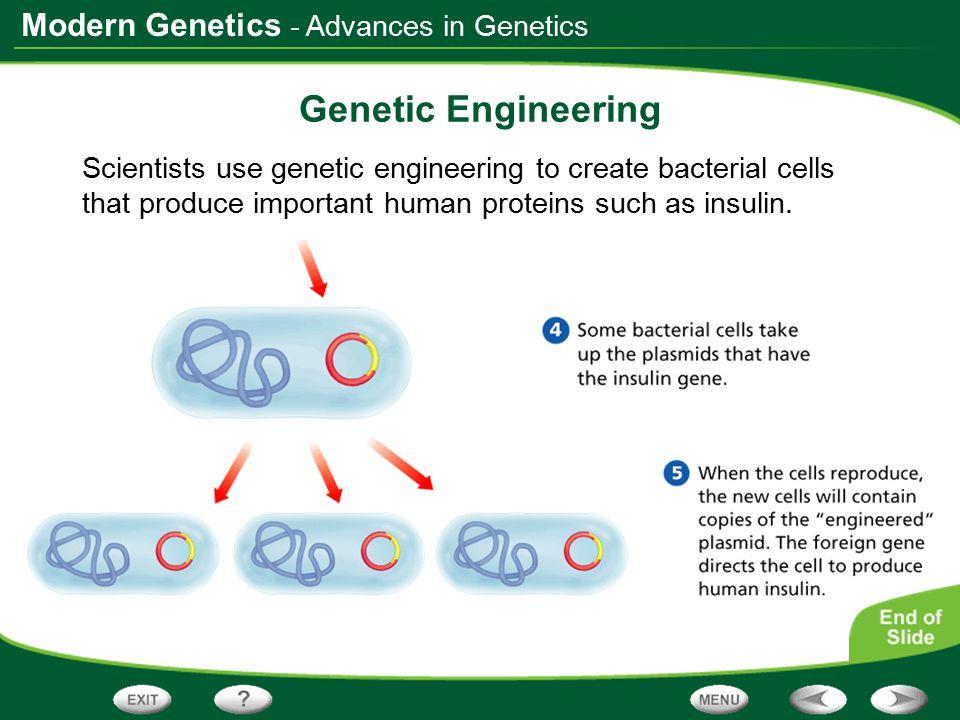 Genetic Engineering - Advances in Genetics