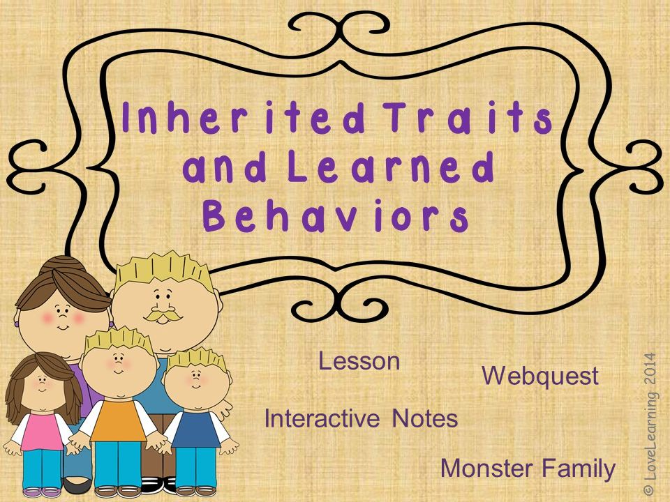 Lesson Webquest Interactive Notes Monster Family