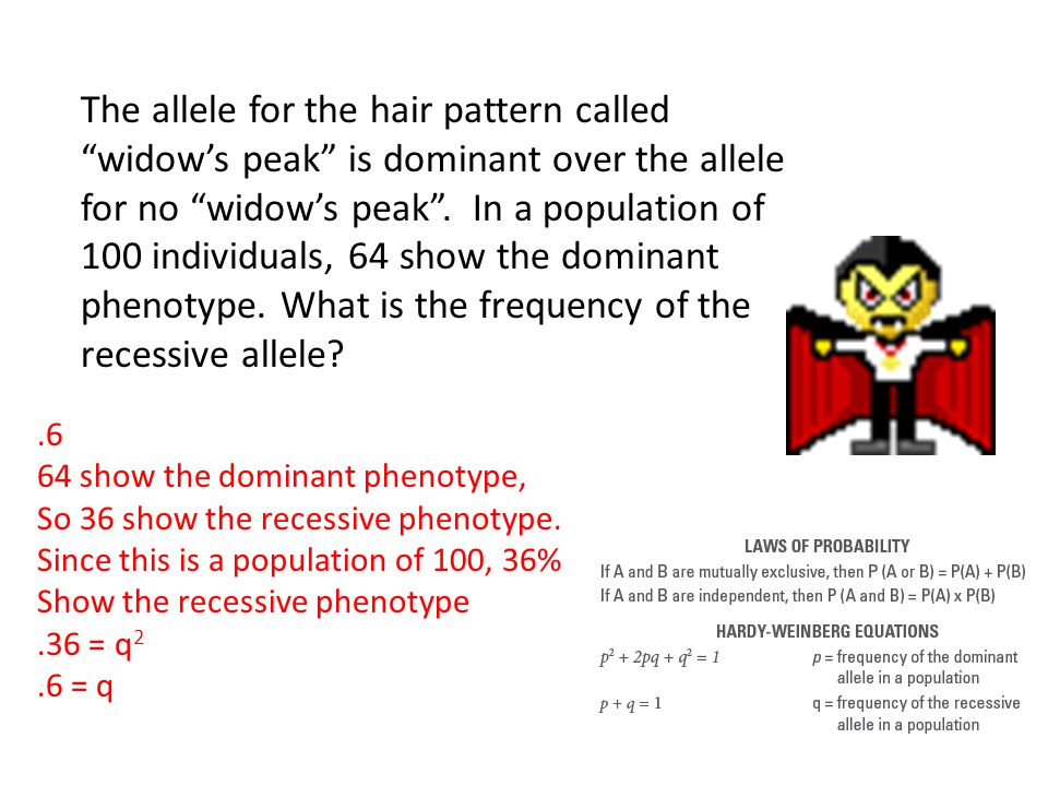 The allele for the hair pattern called widow's peak is dominant over the allele for no widow's peak . In a population of 100 individuals, 64 show the dominant phenotype. What is the frequency of the recessive allele