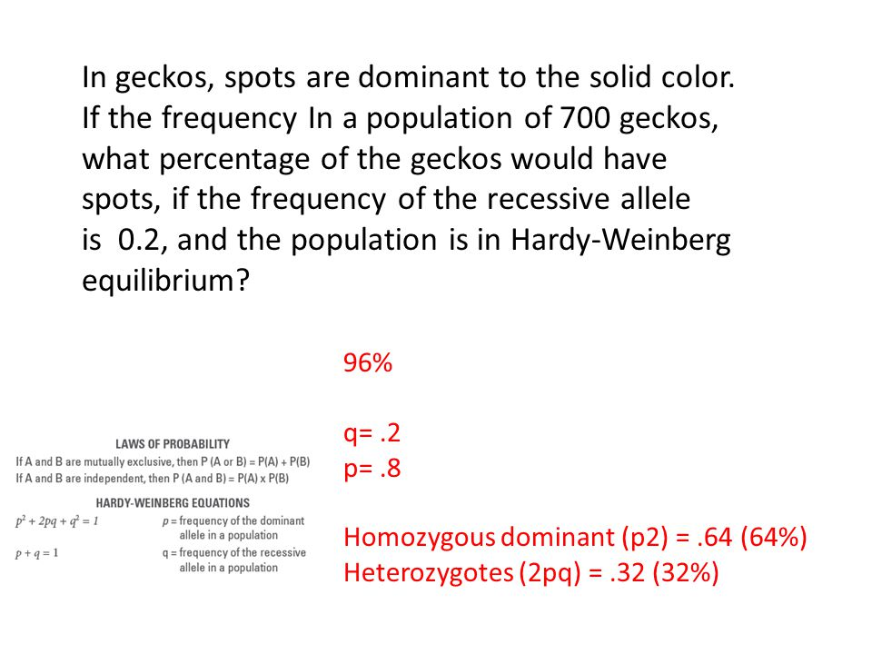 is 0.2, and the population is in Hardy-Weinberg equilibrium